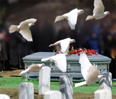 Dove Release at Funeral